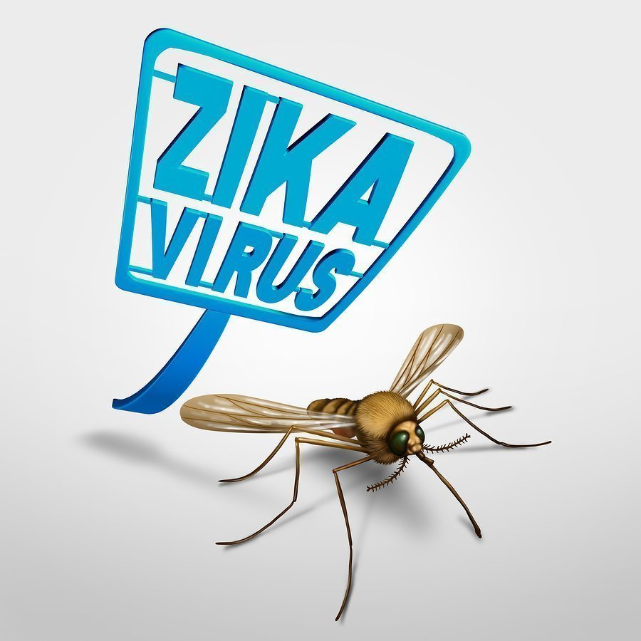 Should Houstonians Be Worried About the Zika Virus