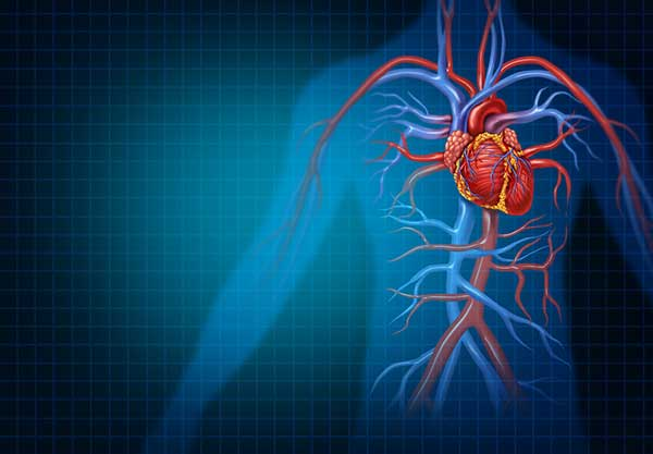 heart disease risks