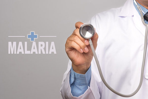 "Photo of Doctor holding a stethoscope and word ""MALARIA"" on gray background"