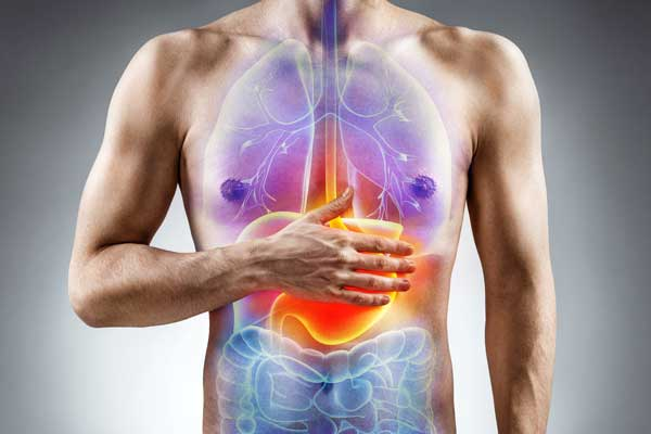 Indigestion, what is it? Causes, Symptoms and Treatment | Mediologiest